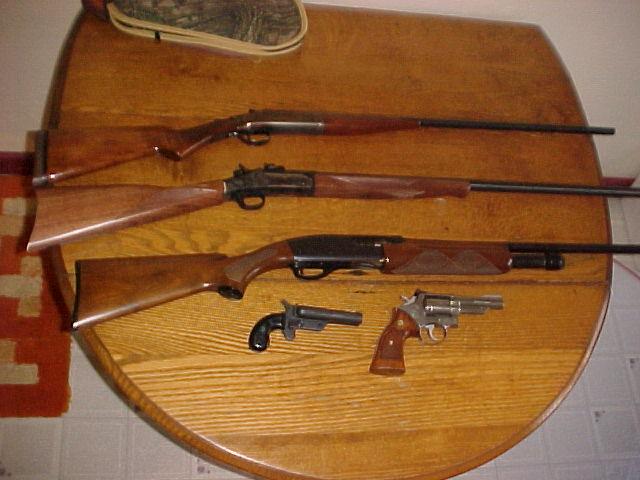 Circle M Auctions Public Auction Jan 28 Rifles & Handguns